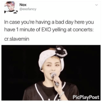 Bad, Bad Day, and Memes: Nox  @exofancy  In case you're having a bad day here you  have 1 minute of EXO yelling at concerts:  Cr. slave min  PicPlayPost I'm putting this as my ringtone . . . . Credit to @slavemin