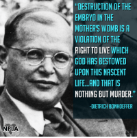"Amen...: NPLA  DESTRUCTION OF THE  EMBRYO IN THE  MOTHER'S WOMB IS A  VIOLATION OF THE  RIGHT TO LIVE  WHICH  GOD HAS BESTOWED  UPON THIS NASCENT  LIFE...AND THAT IS  NOTHING BUT MURDER.""  -DIETRICH BONHOEFFER Amen..."