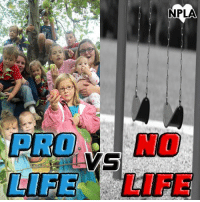 Which would you rather be?: NPLA  LIFE -LIFE Which would you rather be?