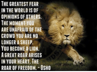 The roar of freedoms rings true. We Patriots are not sheep. We have no fear regarding  what others think. We stand proud and strong to defend our Rights, the Constitution, this Country and the innocent.  It matters not whether the sheep believe. We do what we do because that is who we are. Patriots sound off!   -- Cold Dead Hands Gun Rights Apparel: Cdh2a.com/shop  Anna Ray aka Phoenix: NS  RFR  AOE  0  0  ES L F T D A E A  ERO  DRE  TRONAU //  EWMMFYAORHF  A IMA  HEAAE  TOS  EWN  CTR  GHN  ETIEEONU  E-MUWG  BEOR  NP.H R ROOG  TIOTACLYAIR The roar of freedoms rings true. We Patriots are not sheep. We have no fear regarding  what others think. We stand proud and strong to defend our Rights, the Constitution, this Country and the innocent.  It matters not whether the sheep believe. We do what we do because that is who we are. Patriots sound off!   -- Cold Dead Hands Gun Rights Apparel: Cdh2a.com/shop  Anna Ray aka Phoenix