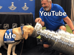 Drink up sheeple, invest in this meme to uncover the truth about your profits!: NS  STANLEY CUP  CHAMPIONS  CHAMPIONS  YouTube  NHL  NHL  Me  Conspiracy theories  SERVICE DOG IN  TRANING Drink up sheeple, invest in this meme to uncover the truth about your profits!
