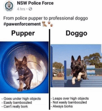 Borks: NSW Police Force  4 hrs  From police pupper to professional doggo  #pawenforcement侃.  Pupper  Doggo  Leaps over high objects  Goes under high objects  Easily bamboozled  - Not easily bamboozled  - Can't really bork  Always borks