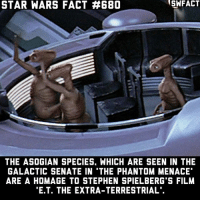 Memes, Star Wars, and Stephen: NSWFACT  STAR WARS FACT #680  THE ASOGIAN SPECIES. WHICH ARE SEEN IN THE  GALACTIC SENATE IN THE PHANTOM MENACE  ARE A HOMAGE TO STEPHEN SPIELBERG S FILM  E.T. THE EXTRA-TERRESTRIAL Does Star Wars and E.T. exist in the same universe? There were also some Star Wars toys being played with in E.T.