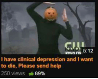 ntni 5:12  I have clinical depression and I  want  to die, Please send help  250 views 89%