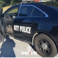 Memes, Police, and Wshh: NTY POLICE  UnpL STAR He just stole the cop car 😳🚓🚨 WSHH (via @uglyboyeddie)