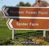 Spider, Superhero, and Tumblr: Nuclear Power Plant  Spider Farm  What could go wrong srsfunny:Be Right Back, Gonna Become A Superhero