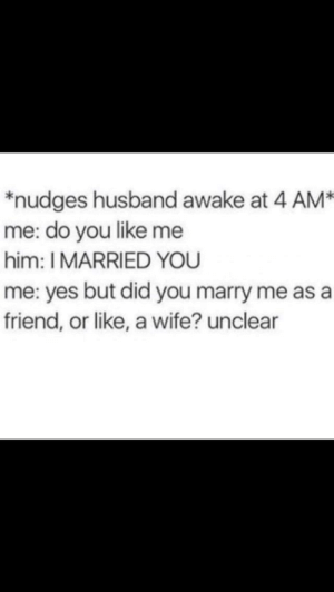 Its just grownup kids: *nudges husband awake at 4 AM  me: do you like me  him: I MARRIED YOU  me: yes but did you marry me as a  friend, or like, a wife? unclear Its just grownup kids