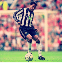 """Happy Birthday, Nolberto Solano! The Peruvian became a """"Native Geordie"""" during his time at Newcastle United in England, where he enjoyed eight years at the club over two spells. With 95 caps, Solano was also a popular figure in his homeland, so much so that his wedding was televised live in Peru! happybirthday NUFC 🎉: NuFE Happy Birthday, Nolberto Solano! The Peruvian became a """"Native Geordie"""" during his time at Newcastle United in England, where he enjoyed eight years at the club over two spells. With 95 caps, Solano was also a popular figure in his homeland, so much so that his wedding was televised live in Peru! happybirthday NUFC 🎉"""