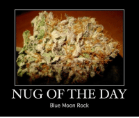 Blue Moon: NUG OF THE DAY  Blue Moon Rock