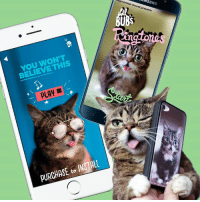 Get excited for every phone call and text with Lil BUB's new Ringtone app! Available for iPhone and Android at http://www.lilbubsringtones.com/  As with all BUB stuff, a portion of every sale benefits special needs pets.: nugmonster Sound presents  NG  BELIEVE THIS  PLAy  PURCHASE INSTALL  to Get excited for every phone call and text with Lil BUB's new Ringtone app! Available for iPhone and Android at http://www.lilbubsringtones.com/  As with all BUB stuff, a portion of every sale benefits special needs pets.