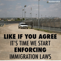 Do you agree?: NumbersUSA  LIKE IF YOU AGREE  IT'S TIME WE START  ENFORCING  IMMIGRATION LAWS Do you agree?
