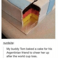 🤣😂🤣😂: nurdsite  My buddy Tom baked a cake for his  Argentinian friend to cheer her up  after the world cup loss 🤣😂🤣😂