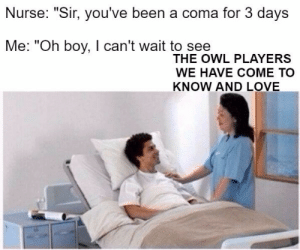 """Love, Been, and Boy: Nurse: """"Sir, you've been a coma for 3 days  Me: """"Oh boy, I can't wait to see  THE OWL PLAYERS  WE HAVE COME TO  KNOW AND LOVE"""