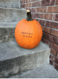 Put out a really scary pumpkin for Halloween!! 👻🎃: NURSING  SCHOOL Put out a really scary pumpkin for Halloween!! 👻🎃