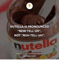 """Memes, Nutella, and Knowledge: NUTELLA IS PRONOUNCED  """"NEW-TELL-UH"""",  NOT """"NUH-TELL-UH"""".  KNOWLEDGE & ENTERTAINMENT  FACTBOLT COM 👍 A little layout change, the imbalance of the old one started to bug me. — fact factbolt"""