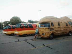 Nuts and weiners are my two favorite things.: Nuts and weiners are my two favorite things.