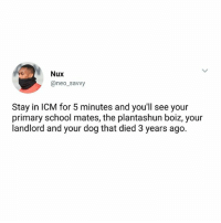 Memes, School, and True: Nux  @neo_savvy  Stay in ICM for 5 minutes and you'll see your  Stay in ICM for 5 minutes and youll see your  primary school mates, the plantashun boiz, your  landlord and your dog that died 3 years ago. True or False? 😂 ICM IkejaCityMall