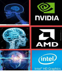 nVIDIA  AMI D  intel  Intel  HD Graphics