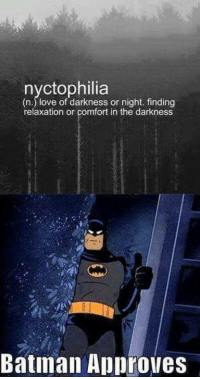 Batman, Love, and Comics: nyctophilia  (n.) love of darkness or night. finding  relaxation or comfort in the darkness  Batiman Approves Finding relaxation or comfort in the dark. -Batman #gothamcitymemes