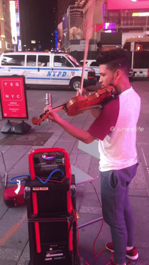 "Tumblr, Blog, and Nypd: NYPD  TS Q  NY C  junee ite mexicanesecat: okay-maybe-its-anti:  juneelite: When New Yorkers hear a violin 🤣🤣🕺🏾🔥  This is what I should think when they say ""Boys will be boys""  Wholesome content~ xD"
