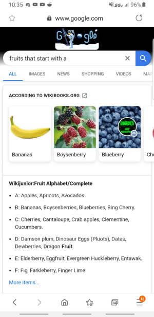 Dinosaur, Fake, and Google: O  5GE l 96%  10:35  www.google.com  fruits that start with a  МAР  IMAGES  SHOPPING  VIDEOS  ALL  NEWS  ACCORDING TO WIKIBOOKS.ORG  HORDES  APOCALYPTS  Blueberry  Che  Boysenberry  Bananas  Wikijunior:Fruit Alphabet/Complete  A: Apples, Apricots, Avocados.  B: Bananas, Boysenberries, Blueberries, Bing Cherry.  C: Cherries, Cantaloupe, Crab apples, Clementine,  Cucumbers  D: Damson plum, Dinosaur Eggs (Pluots), Dates,  Dewberries, Dragon Fruit.  E: Elderberry, Eggfruit, Evergreen Huckleberry, Entawak.  F: Fig, Farkleberry, Finger Lime  More items...  34 Yes, hello mods, it wasn't fake and here is a different image of the same thing to prove, sincerely, you removed my post