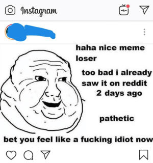 They are self aware: O Instagram  haha nice meme  loser  too bad i already  saw it on reddit  2 days ago  pathetic  bet you feel like a fucking idiot now They are self aware