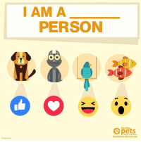 Hit up the matching reaction to the pet animal you chose!: O iStock com  I AM A  PERSON  Healthy  Healthy Pets, Mercola.com Hit up the matching reaction to the pet animal you chose!