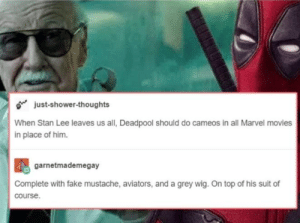 Fake, Funny, and Movies: o just-shower-thoughts  When Stan Lee leaves us all, Deadpool should do cameos in all Marvel movies  in place of him.  garnetmademegay  Complete with fake mustache, aviators, and a grey wig. On top of his suit of  course I think Stan Lee would approve via /r/funny https://ift.tt/2FnEYcL