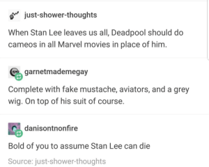 Fake, Movies, and Shower: o just-shower-thoughts  When Stan Lee leaves us all, Deadpool should do  cameos in all Marvel movies in place of him  garnetmademegay  Complete with fake mustache, aviators, and a grey  wig. On top of his suit of course.  danisontnonfire  Bold of you to assume Stan Lee can die  Source: just-shower-thoughts Marvel read this and take notes.