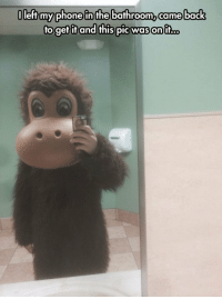 Phone, Tumblr, and Blog: O  left my phone in the bathroo  m,came back  o gefifand fhis piC Was on If... epicjohndoe:  Some Monkey Business Happened