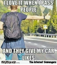 Funny, Love, and Meme: O LOVE IT WHEN I PASS  PEOPLE  ANDITHEY GIVE MY CAR  LIKES  The ntemet Scavengers <p>Funny daily nonsense  Tuesday meme collection  PMSLweb </p>