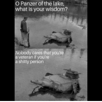 Memes, What Is, and Truth: O Panzer of the lake,  what is your wisdom?  Nobody cares that you're  a veteran if you're  a shitty person Truth bomb by @vet.apparel