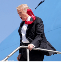 WEIGH IN: Any guesses on why President DonaldTrump thinks Scotch tape is > a tie clip? For more on this story, visit Insider.FoxNews.com.: o Sentinel via AP WEIGH IN: Any guesses on why President DonaldTrump thinks Scotch tape is > a tie clip? For more on this story, visit Insider.FoxNews.com.