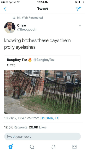 Houston, Sprint, and Houston Tx: o Sprint  10:16 AM  Tweet  Mr. Wah Retweeted  Chino  @theogpooh  knowing bitches these days them  prolly eyelashes  BangBoy Tez ) @BangboyTez  Omfg  10/21/17, 12:47 PM from Houston, TX  12.5K Retweets 26.6K Likes  Tweet your reply Y'all going overboard now