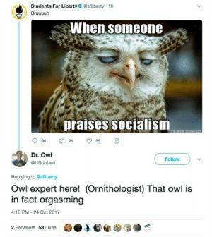 Socialism, Liberty, and Irl: O)  Students For Liberty @sfliberty 1h  Bruuuuh  When someone  praises socialism  Dr. Owl  @USdotard  Follow  Replying to @sfliberty  Owl expert here! (Ornithologist) That owl is  in fact orgasming  4:18 PM -24 Oct 2017  2 Retweets 53 Likes me irl