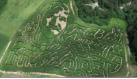 Memes, Chris Kyle, and 🤖: O The most badass corn maze of all time. RIP Chris Kyle.
