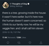 We all need a Steven in our life.: O Thoughts of Dog <  @dog_feelings  there is a tree. growing inside the house  It wasn't here earlier. but it's here now  the human doesn't seem concerned. so  i think its our family now. he will be my  veggie fren. and i shall call him steven  2018-12-19, 7:07 PM  17.4K Retweets 139K Likes We all need a Steven in our life.