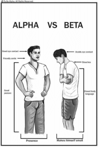 alpha: O To Be Alpha, All Rights Reserved  ALPHA VS BETA  Good eye contact  Avoids eye contact  Friendly smile  Slouches  Closed body  posture  language  Makes himself small  Presence