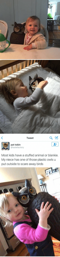 Animals, Anime, and Scare: o   Tweet  pat tobin  atastefactory  Most kids have a stuffed animal or blankie.  My niece has one of those plastic owls u  put outside to scare away birds this makes me happy 😂