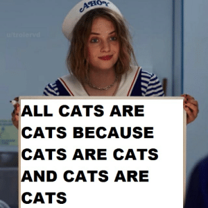 Cats, Reddit, and All: O  u/trolervd  ALL CATS ARE  CATS BECAUSE  CATS ARE CATS  AND CATS ARE  CATS when you go insane