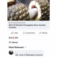 Pizza, Champagne, and Cocaine: O WUNDERGROUND  50% of world's Pineapples Now Contain  Cocaine  tb Like Comment  Share  201  37 shares  Most Relevant v  Ok, now it belongs on pizza (@champagne_diesel)