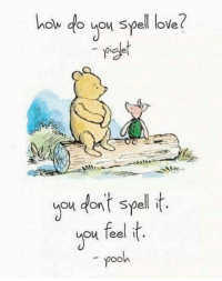 Love, You, and Feels: o you spell love  piset  you dant spell t  you feel t  pooh The feels 🤗