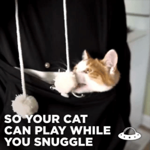 Dank, Love, and 🤖: O YOUR CAT  CAN PLAY WHILE  YOU SNUGGLE I'm like a mother kangaroo and I love it 😭
