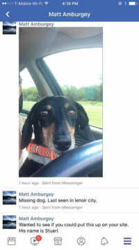 Memes, T-Mobile, and Lost: o00 T-Mobile Wi-Fi  4:19 PM  Matt Amburgey  Matt Amburgey  1 hour ago Sent from Messenger  Matt Amburgey  Missing dog. Last seen in lenoir city.  1 hour ago Sent from Messenger  Matt Amburgey  Wanted to see if you could put this up on your site.  His name is Stuart BCHS LOST DOG ALERT!