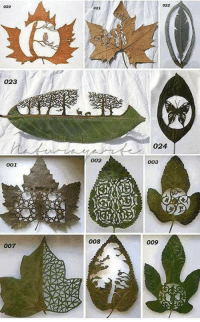 Astonishing Leaf Cutting Art By Lorenzo Manuel Duran... :D  Source: http://www.lorenzomanuelduran.es: O23  001  007  021  002  008  024  003  009 Astonishing Leaf Cutting Art By Lorenzo Manuel Duran... :D  Source: http://www.lorenzomanuelduran.es