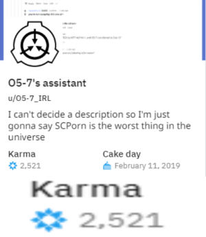 God, The Worst, and Cake: O5-7's assistant  u/05-7_IRL  I can't decide a description so I'm just  gonna say SCPorn is the worst thing in the  universe  Karma  Cake day  2,521  February 11, 2019  Karna  2,521 oh god oh fuck please dont steal my account