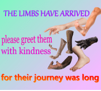 Journey, Kindness, and Them: oae  THE LIMBS HAVE ARRIVED  please greet them  with kindness  for their journey was long
