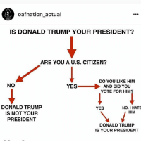 @oafnation_actual with the meme of the year.: oafnation actual  IS DONALD TRUMP YOUR PRESIDENT?  ARE YOU A U.S. CITIZEN?  DO YOU LIKE HIM  NO  YES  AND DID YOU  VOTE FOR HIM?  DONALD TRUMP  NO. I HATE  YES  HIM  IS NOT YOUR  PRESIDENT  DONALD TRUMP  IS YOUR PRESIDENT @oafnation_actual with the meme of the year.