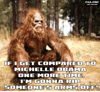 Bigfoot, Memes, and 🤖: OASA.ORG  FREE YOUR MIND  GET COMPARED To  MICHELLE OBAN MTA  ONE MORE TIMED  I'M ON  RIP  SOMEONEOS ARMS OFF! I feel for Bigfoot, don't you?