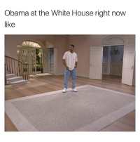 @theladbible killing the meme game: Obama at the White House right now  like @theladbible killing the meme game